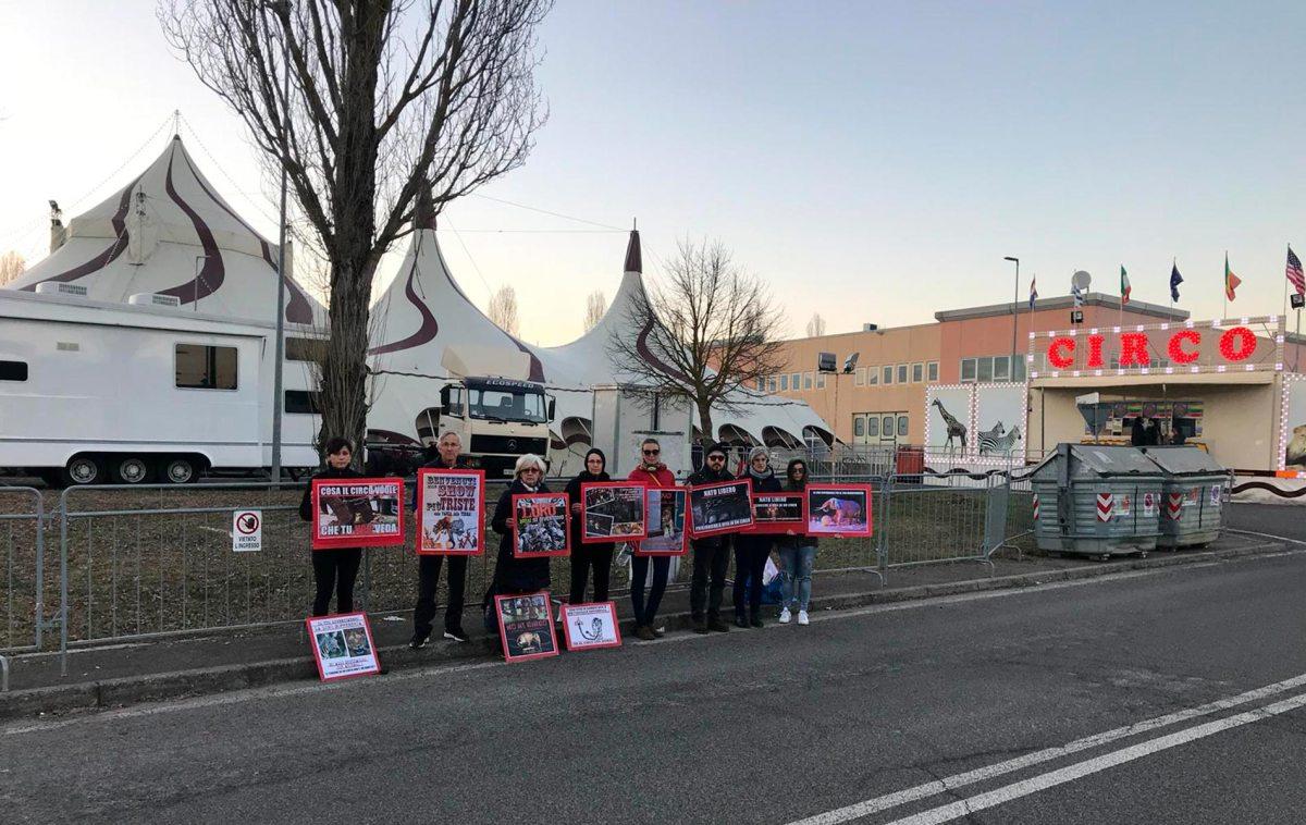 Manifestazione questo pomeriggio a Bibbiena (Ar) davanti al circo Millennium contro l'uso degli animali negli spettacoli