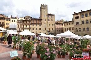 Fiori in Piazza Grande - Arezzo 08