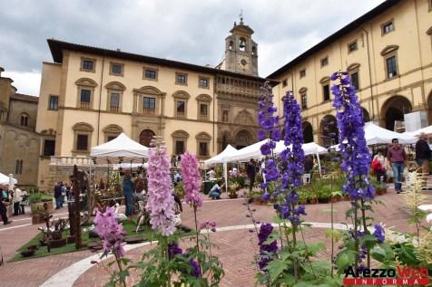 Fiori in Piazza Grande - Arezzo 09