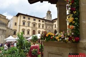 Fiori in Piazza Grande - Arezzo 28