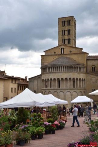 Fiori in Piazza Grande - Arezzo 34