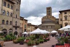 Fiori in Piazza Grande - Arezzo 35