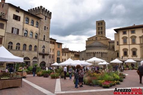 Fiori in Piazza Grande - Arezzo 36