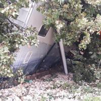 Cortona: pianta secolare cade sopra un camper