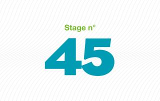 ARFI stage 45 bonnes pratiques professionnelles en MAS