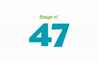 ARFI stage 47 bonnes pratiques professionnelles en ESAT