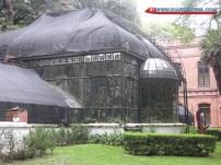 Botanic Garden de buenos aires
