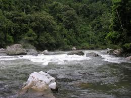 cuencasq