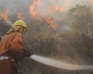 Valientes. El año pasado, los bomberos combatieron incansablemente los incendios en la provincia (La Voz / Archivo).