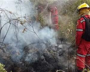 La proliferación de incendios, especialmente en el centro del país, dejaba hasta este martes 25 municipios afectados.