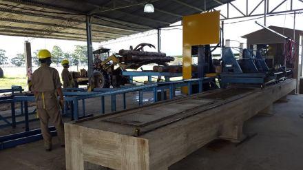 Corrientes. Aserradero en Parque Forestoindustrial S.Rosa