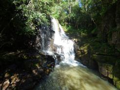 Selva Misionera 12