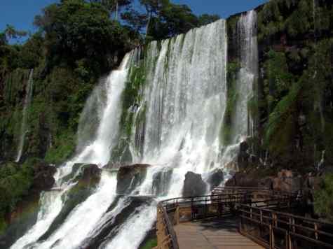 EcosistemasForestales3