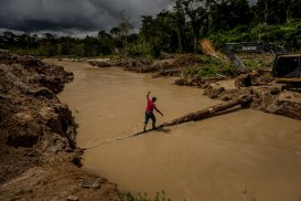 Amazonia 5(Munduruku)