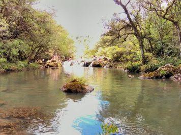 ReservaGuarani10