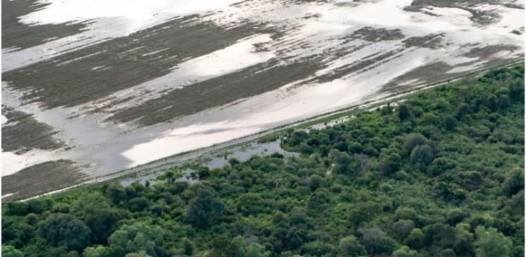 Greenpeace(desmonte Chaco2)
