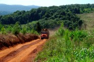 Deforestacion7