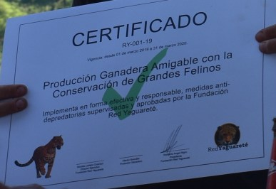 Certificado Fundacion Red Yaguarete