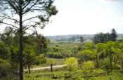 UNLP.Reserva Natural del Valle de Cuña Piru