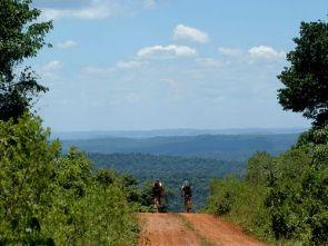 FotoArgentinaForestal.SelvaMisionera(CaminosenANP1)