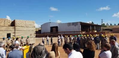 Mejora de la Productividad orientado a empresas madereras (3)