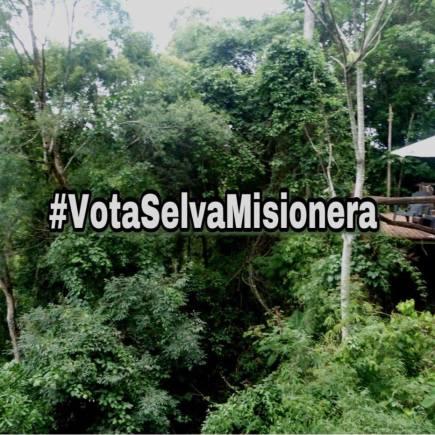 SelvaMisionera2