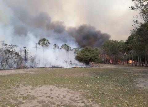 Incendio Pantanal Paraguayo
