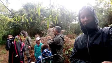 Embajadores de la Selva (2)