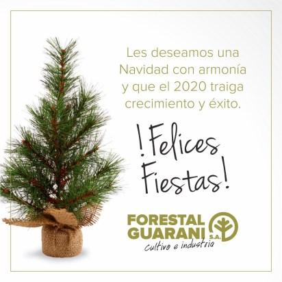 2 Forestal Guarani