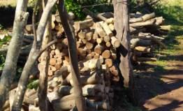 Comunidades de Kuña Piru (invasion de tierras) (5)