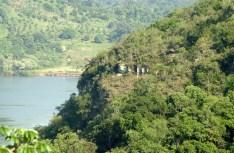 PPTeyuCuare (Foto ArgentinaForestal)2
