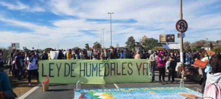 quemas Islas Delta Manifestacion (3)