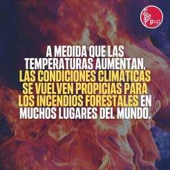 Clima y FUego. Periodistas por el Planeta2
