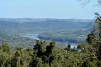 A Paisajes Forestales4