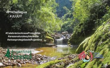 14 ANP Jujuy PN-Calilegua_Ph_ParquesNacionales