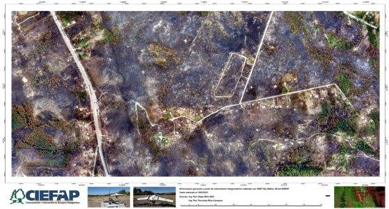 Lago Puelo_A2-PPinar-15M2021_VANT_CIEFAP-01