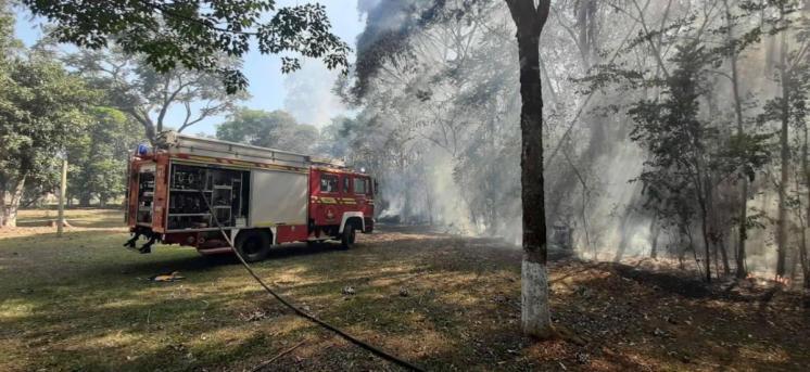 Puerto Rico Incendio Forestal 1