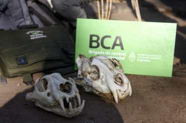 BCA allanamiento en Santa Fe (13)