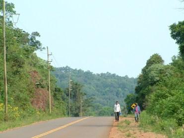Foto ArgentinaForestal Desarrollo Socio Territorial 2