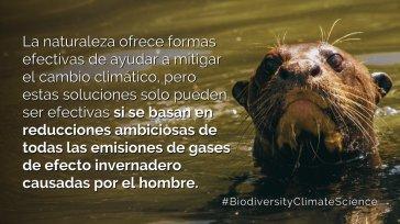 IPBES Fauna silvestre