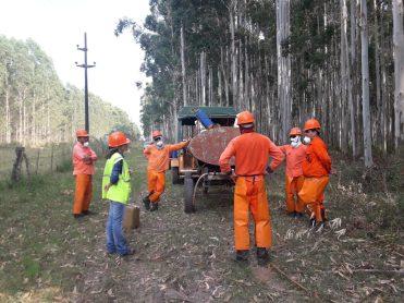 Empresas Forestales PEFC Cerfoar (3)