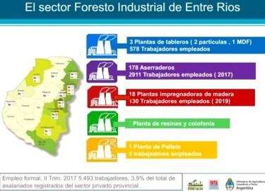 el sector forestal de enytre rios 2