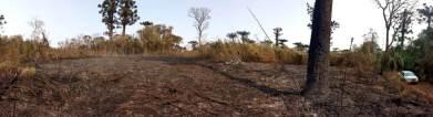 Incendio en el PP Araucaria Agosto 2021 (8)
