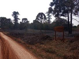 Incendio en el Parque Araucaria (3)