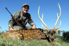 Axis Deer hunting