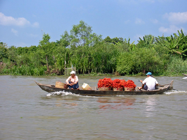 A cruise on the Mekong River