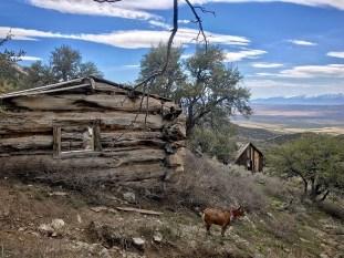 Heavy cabin