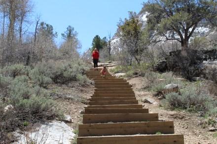 Trailhead steps