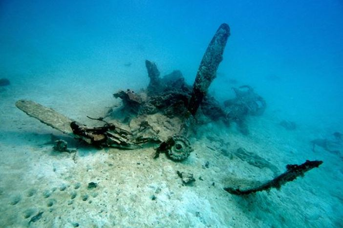 The World War II Helldiver, missing for over 70 years, was discovered in the waters of Palau. Pictured is the bent propellor.