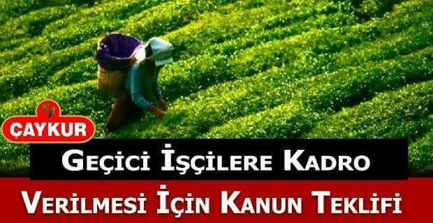 CHP, Çaykur'da Çalışan Geçici İşçilere Kadro Verilmesi İçin Kanun Teklifi Verdi